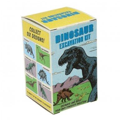 Mažas Dinozauro iškasenų rinkinys 4