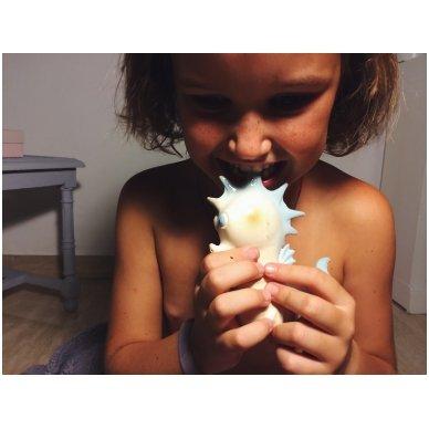 Retro herojų kramtukai - Jūrų arkliukas | Oli&Carol 5